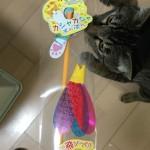 猫のおもちゃ「カシャカシャぶんぶん」が…