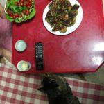 今まで食べた事ない野菜に飛びつくベジタリアンなウチの猫