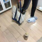 袋に入る猫。トートバック編
